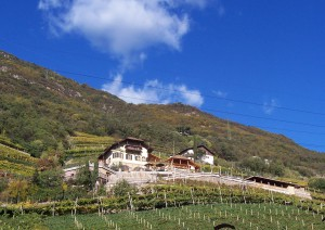 kandler hof winery and vineyard and b&b in bolzano