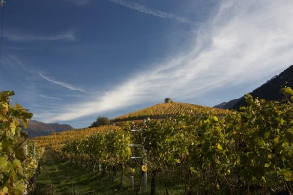 Les Cretes winery