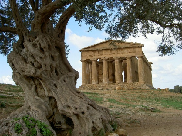 One of Sicily's most famous attractions is the Valley of the Temples, just outside Agrigento
