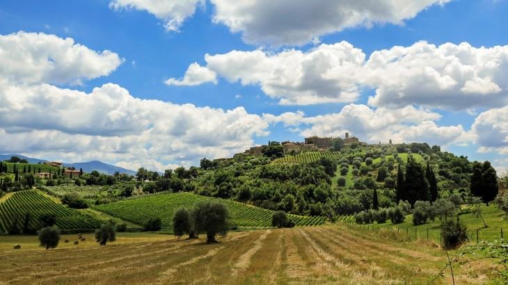 italian wineries