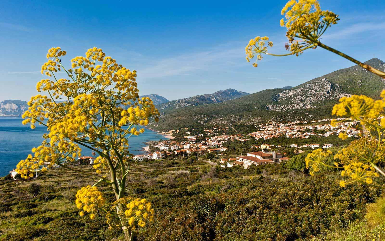 Cala Gonone town