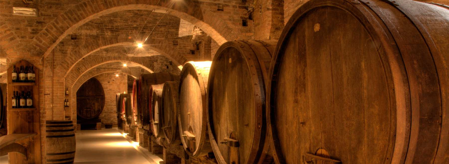Wine Celler in Tuscany